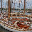 SSCA setter farge på Bassholmdagen