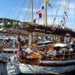 West Wind, Trygg og Fenris på Risør Trebåtfestival 2013
